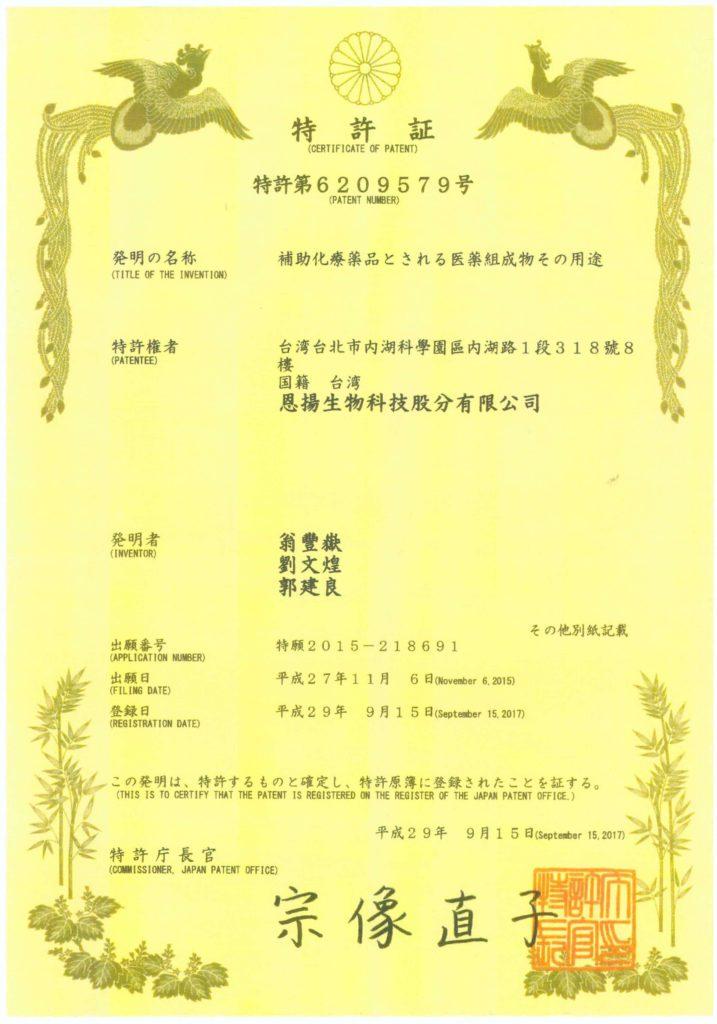 日本功效專利 化療輔助