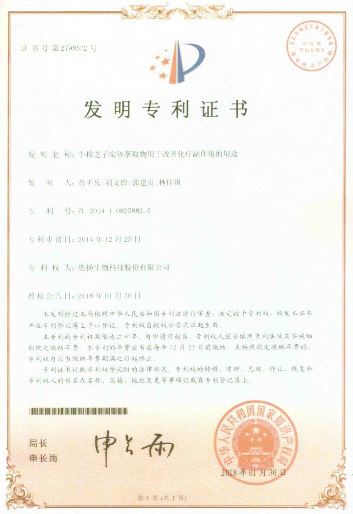 中國 功效專利 化療輔助