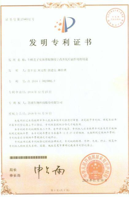 中國功效專利 化療輔助